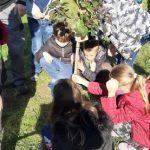 Uczniowie klasy 4C sadzą drzewa koło szkoły