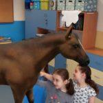 Dziewczynki dotykają konia w rozszerzonej rzeczywistości .