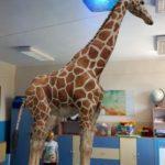 Rozszerzona rzeczywistość-chłopiec i żyrafa 3d.