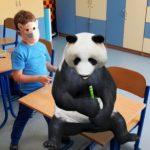 Rozszerzona rzeczywistość-chłopiec i panda 3d.