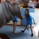 Rozszerzona rzeczywistość-dziewczynka wkłada głowę do paszczy hipopotama 3d.