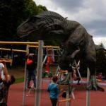 Zabawy dzieci na placu zabaw.