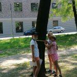 Milena, Laura i Zuzia mierzą obwód drzewa.